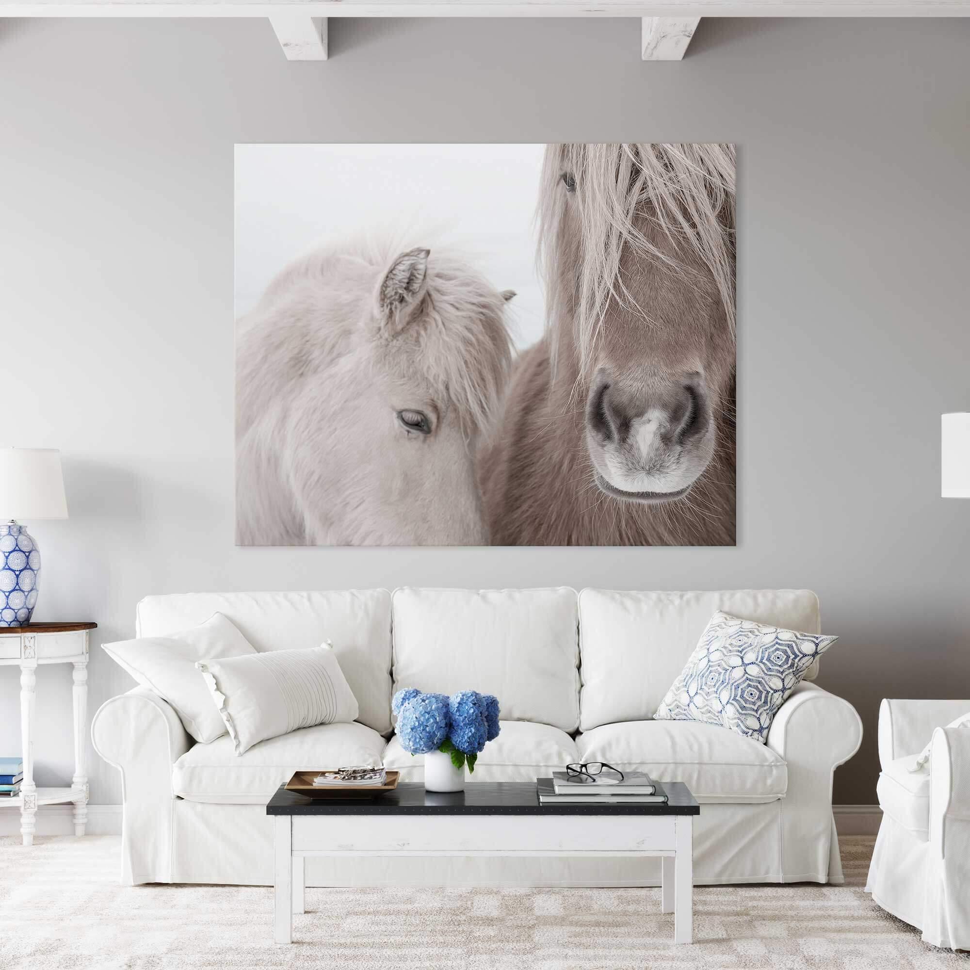 Two Horses Noanahiko Photo Print 0144