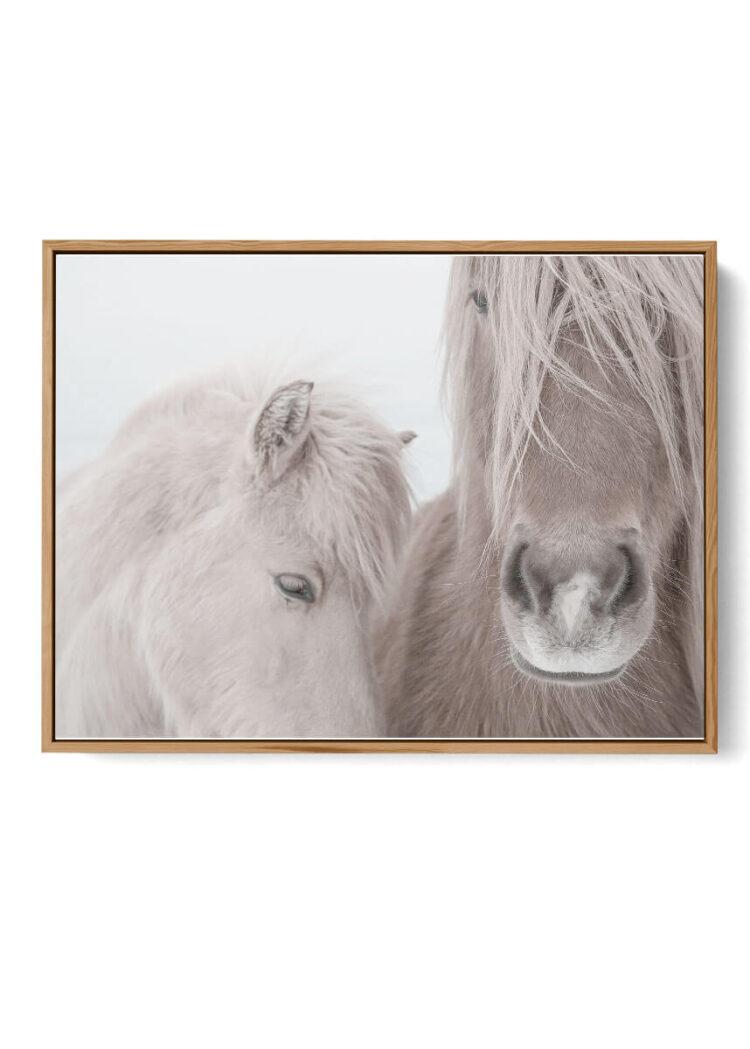 Two Horses Noanahiko art 0144 W