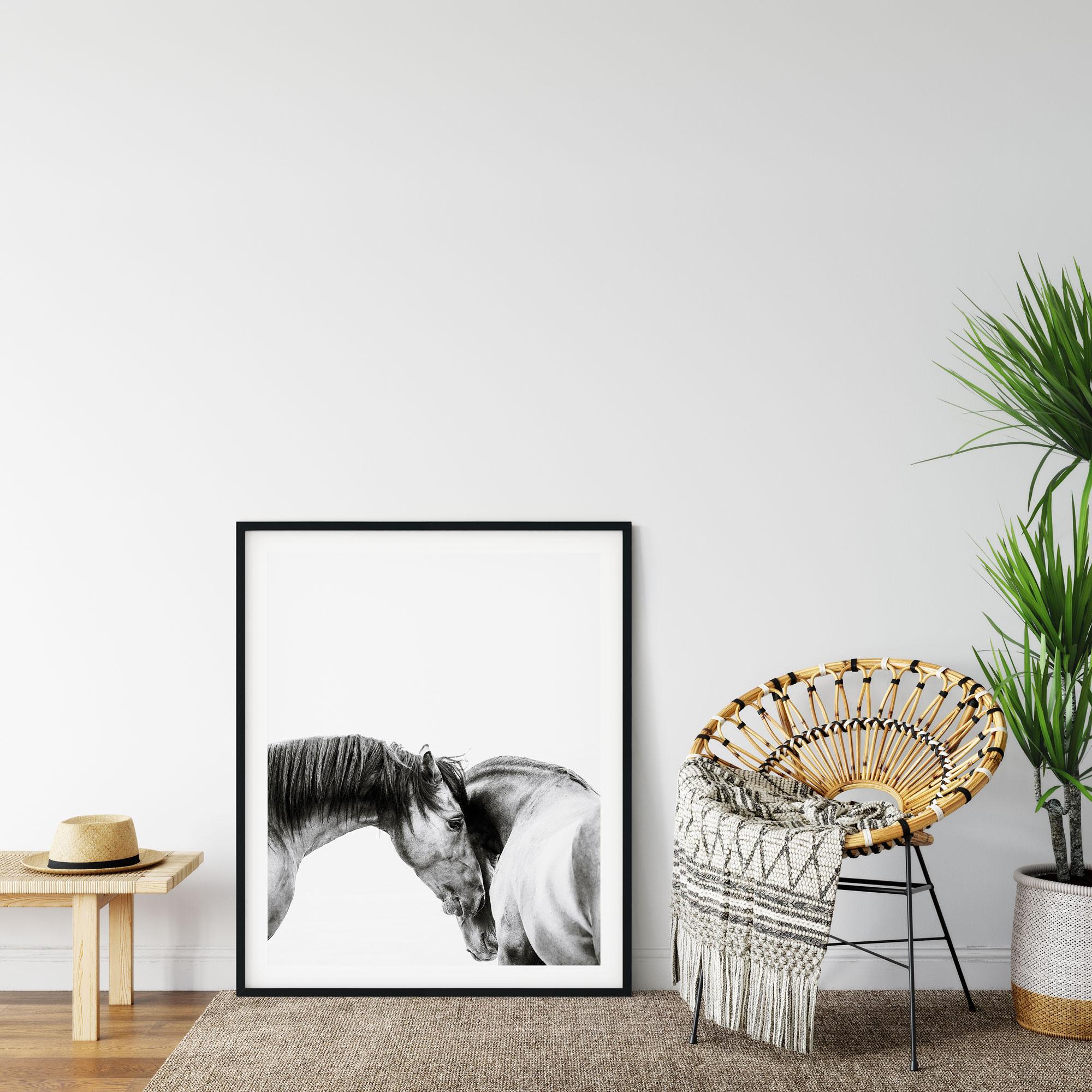 Wild Horses Poster photography Noanahiko 0199